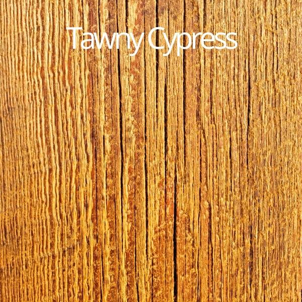 tawny cypress