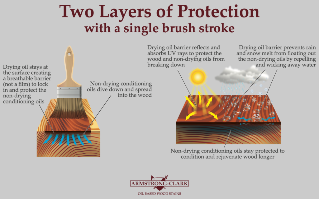 """Illustration of how the Armstrong Clark stain works titled """"Two Layers of Protection with a single brush stroke"""""""